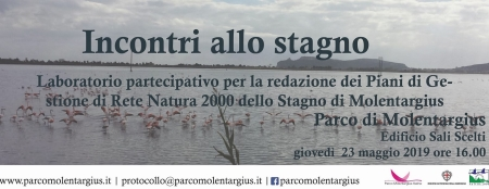 Incontri allo stagno - Laboratorio partecipativo per la redazione dei Piani di Gestione di Rete Natura 2000 dello Stagno di Molentargius
